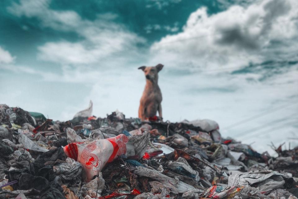 une montagne de déchets non recyclés dans la décharge d'une ville française