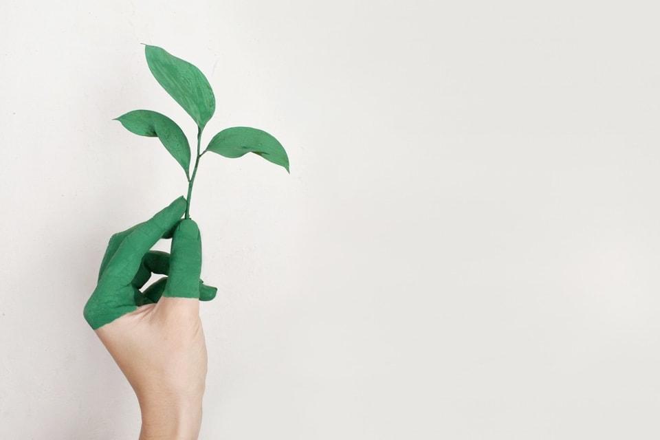 Entreprise française qui développe une marque employeur éco-responsable