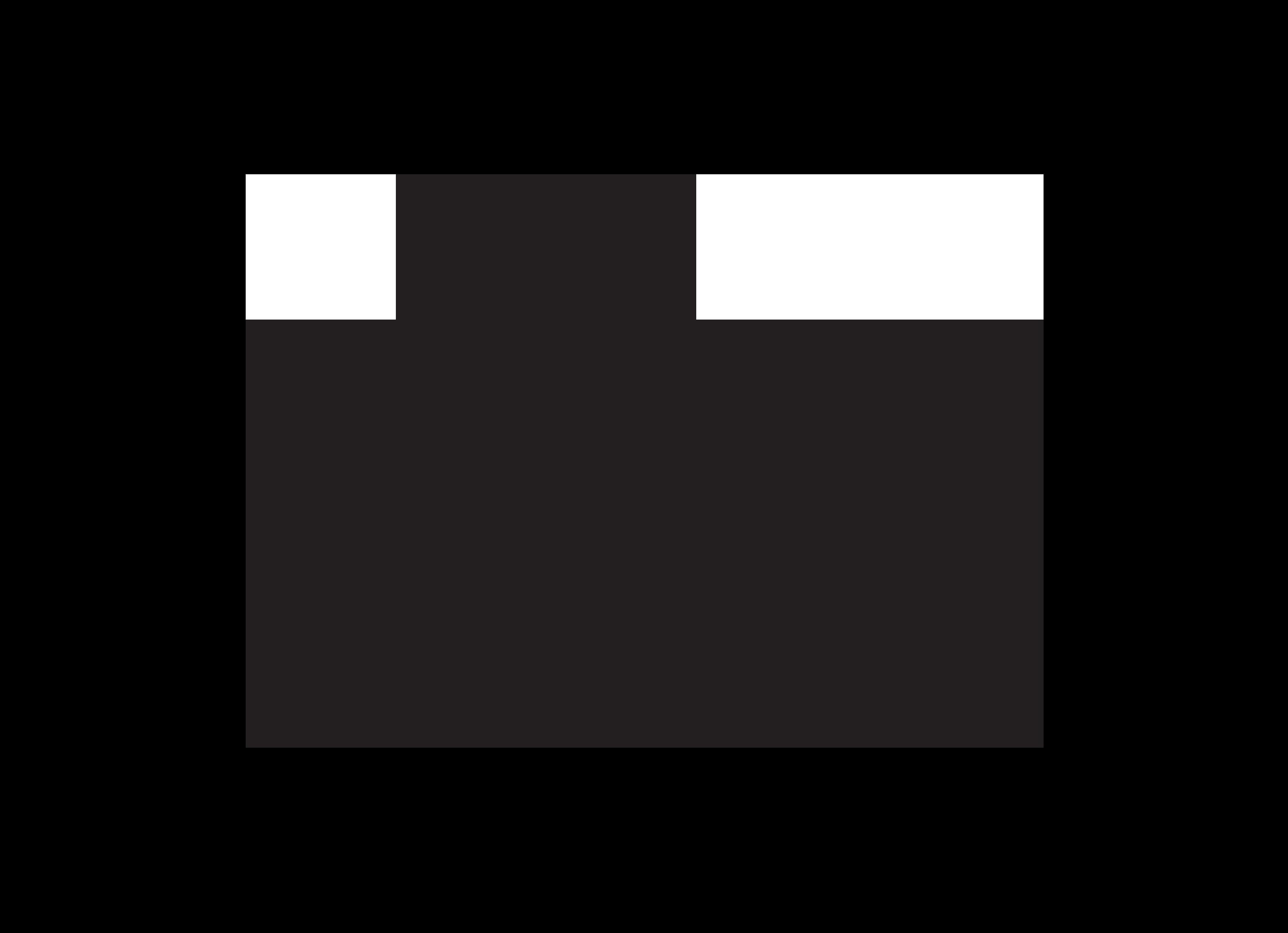 LOGO-LE-VILLAGE-sans-signat-N